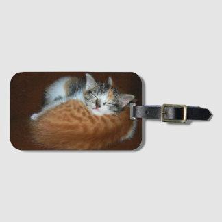 Schläfrige Kätzchen Kofferanhänger