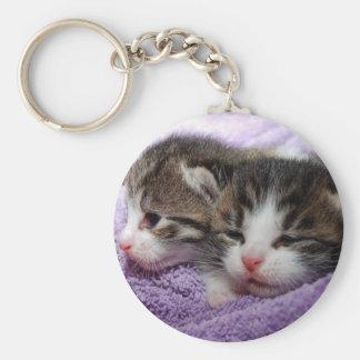 Schläfrige Kätzchen Schlüsselanhänger