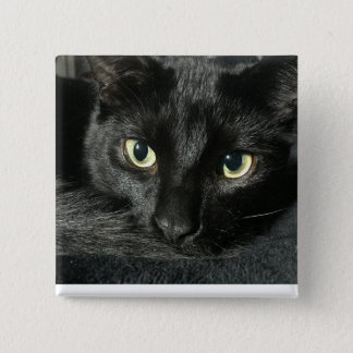 """Schläfrige Katze 2"""" quadratisches Button"""