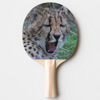 Schläfriger Gepard CUB Tischtennis Schläger
