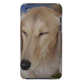 Schläfriger Saluki Hund Barely There iPod Cover