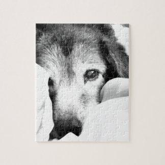 schläfriger Umarmungshund auf dem Bett Puzzle