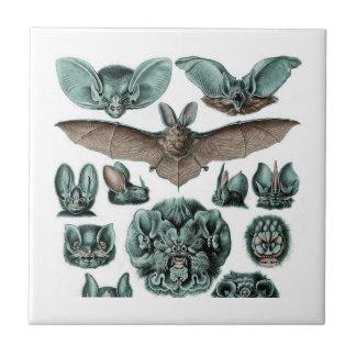 Schläger durch Ernst Haeckel Keramikfliese