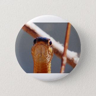 Schlange Runder Button 5,7 Cm