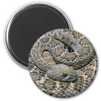 Schlange Runder Magnet 5,7 Cm
