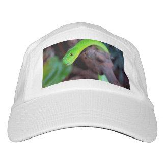 Schlangen-Reptil Headsweats Kappe