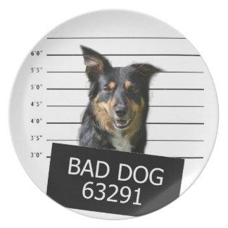 Schlechter Hund Teller