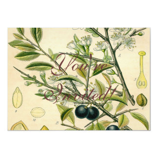 Schlehdorn-botanische Pflanzen-Illustrations-Kunst Karte