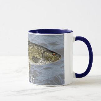 Schleie-Frischwasserfische, mit Wasser-Hintergrund Tasse