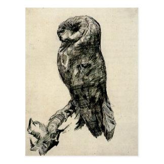 Schleiereule angesehen von der Seite von Vincent Postkarten