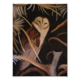 Schleiereule in der Pastelltiermalerei Kunst Foto