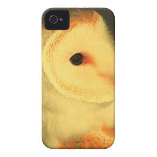 Schleiereule iPhone 4 Case-Mate Hüllen