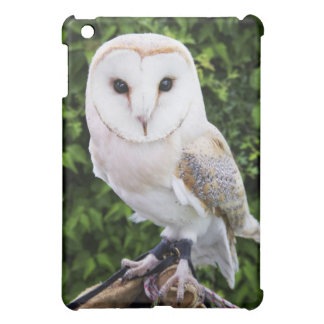 Schleiereule (Tyto alba) auf Handschuh Hüllen Für iPad Mini