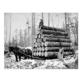 Schleppen einer Last von Logs, 1908 Postkarte