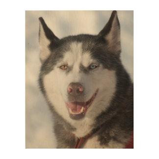 Schlitten-Hundeporträt Holzdruck