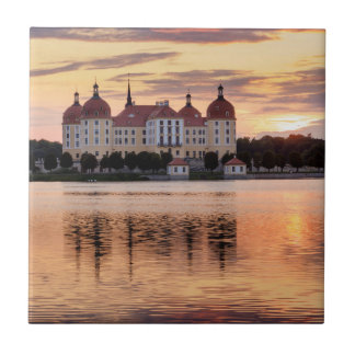 Schloss Moritzburg Fliese