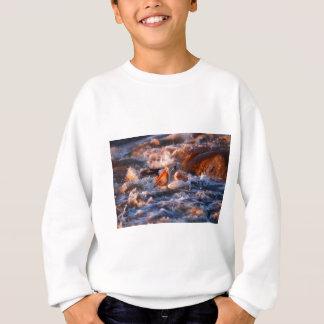 Schluck Sweatshirt