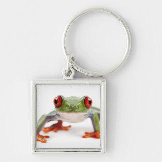 Schlüsselanhänger Frosch