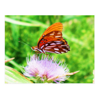 Schmetterling auf Blume Postkarte