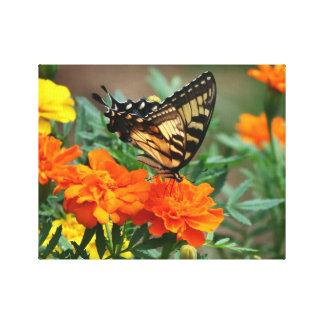 Schmetterling auf den orange und gelben Blumen aus Leinwanddruck