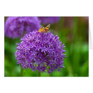Schmetterling auf der Lauch-Blume Karte