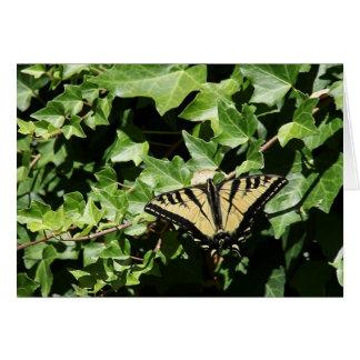 Schmetterling auf Efeu notecard Karte