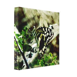 Schmetterling auf einem Zweig Leinwanddruck