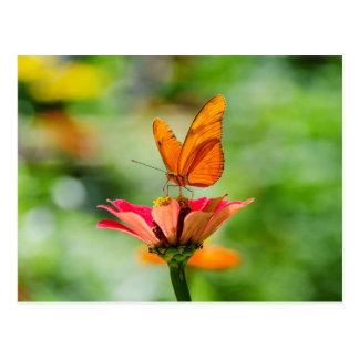 Schmetterling auf einer Blume Postkarte