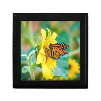 Schmetterling auf einer Sonnenblume Geschenkbox