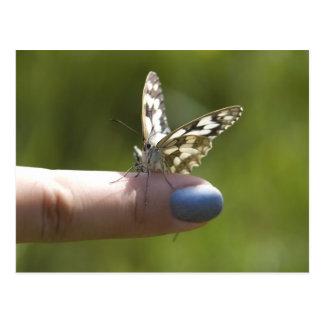 Schmetterling auf Finger Postkarte