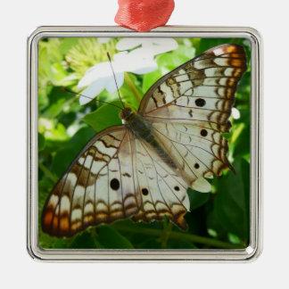 Schmetterling auf Jasmin-tropischer Quadratisches Silberfarbenes Ornament