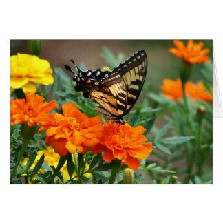Schmetterling auf orange und gelber Blumen-Karte Karte