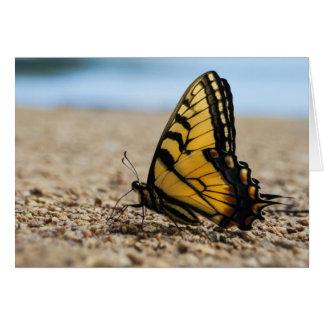 Schmetterling auf Strand Karte