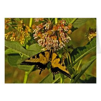 Schmetterling, der auf Blumen-Anmerkungs-Karte Karte