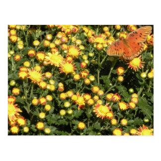 Schmetterling in den Blumen Postkarte