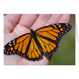 Schmetterling in der Hand Karte
