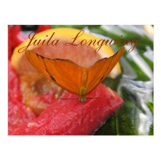 Schmetterling Julia Longwing # 3 Postkarte