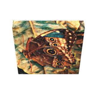 Schmetterling Leinwanddruck