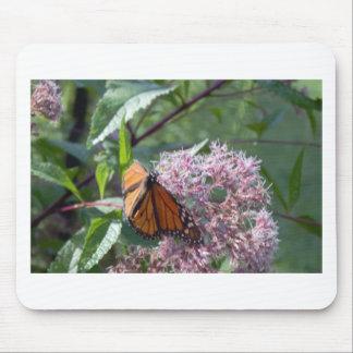 Schmetterling mit Blumen-Foto Mousepads