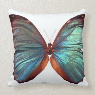 Schmetterling mit Flügeln verbreitete 2 Kissen
