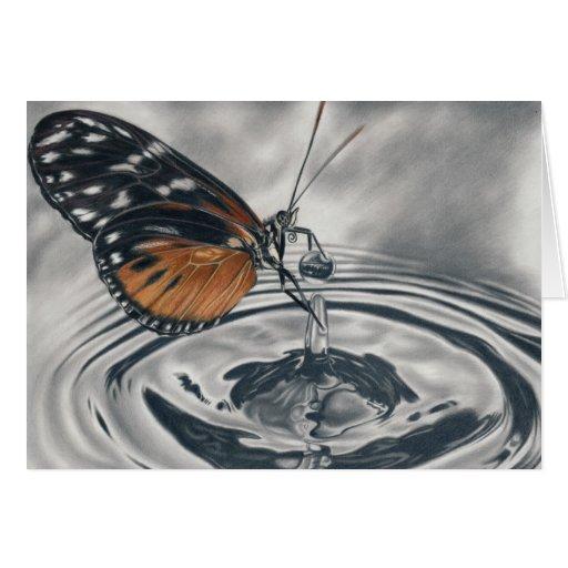 Schmetterling trifft Wassertropfen Karte