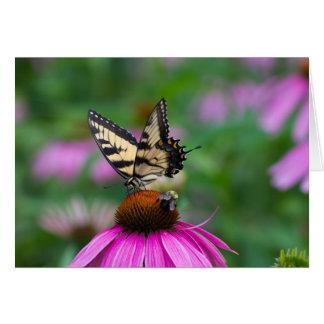 Schmetterling und Biene Karte