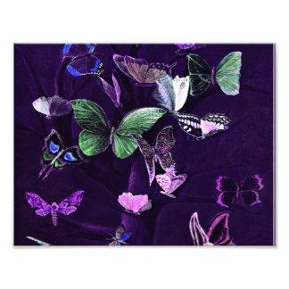 Schmetterlinge auf Lila Fotodruck