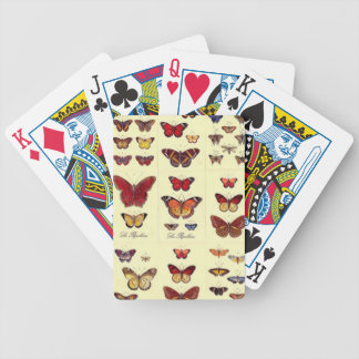 Schmetterlinge - Chartas des Pokers Bicycle Spielkarten
