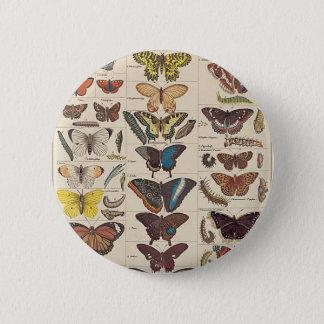 Schmetterlinge Runder Button 5,1 Cm