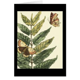 Schmetterlinge u. Blätter mit schwarzem Rahmen Karte