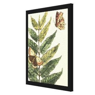 Schmetterlinge u. Blätter mit schwarzem Rahmen Leinwanddruck