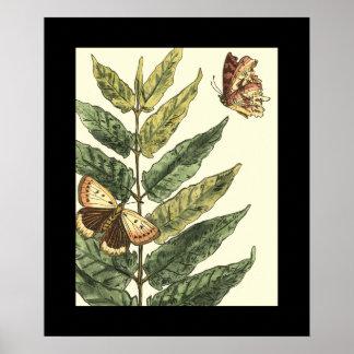 Schmetterlinge u. Blätter mit schwarzem Rahmen Poster