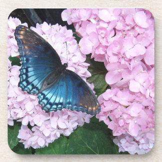 Schmetterlinghydrangea-Blumen-BlumenUntersetzer Untersetzer