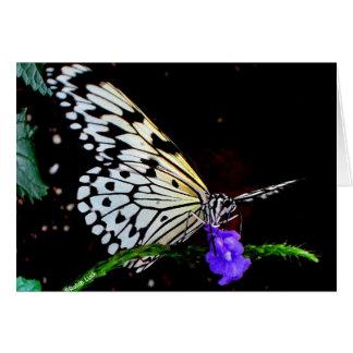 Schmetterlings-Anmerkungs-Karte Karte